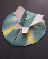 Butterfly on leaf (modular.dodecahedron) Tags: tomokofuse origamispiral