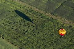 Six Pack (Paul Leb) Tags: canada field balloon hamilton joe pack québec hotairballoon six paysage sr champ montgolfière iberville internationaldemontgolfièresdesaintjeansurrichelieu