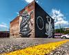 Flood Zone (Sky Noir) Tags: city usa streetart art wall work photography graffiti virginia mural downtown artist flood pov bricks richmond turtles va summit series zone rva g40 artwhino skynoir