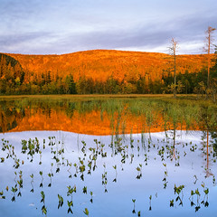 Autumn Sunrise - Fuji Porvia 100F (magnus.joensson) Tags: autumn water zeiss sunrise landscape fuji sweden outdoor hasselblad provia dalarna 100f 500cm sonnar 180mm fulufjället