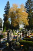 DSC_3350 (aktarian) Tags: ljubljana slovenia slovenija žale cemetery pokopališče