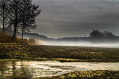 Mysterious land 2 (piotrekfil) Tags: autumn mist lake cold tree nature fog landscape pentax cloudy dusk poland piotrfil