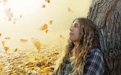 All the leaves are brown (Samkale Bellacrux) Tags: autumn otoo leaves hojas fall wood forest mist november niebla noviembre mountains montaa portrait retrato tree arbol