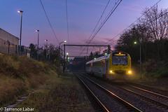 AR 4186 , Chapelle-Dieu ce 14 dcembre 2015 en remplacement des dsiro parties vers Mol. (Photographie ferroviaire) Tags: morning sun sunshine train soleil siemens rail trail alstom lever matin sncf nmbs sncb desiro autorail