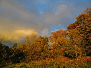 Moody Autumn Sky!