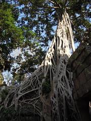 DSCN2307 (albyantoniazzi) Tags: voyage travel architecture cambodia angkorwat temples siemreap archeology kampuchea cambogia