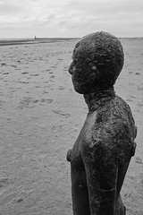 Gormley Figure, Crosby Beach (alison's daily photo) Tags: gormley anotherview crosby beach