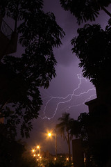 Lightning through the trees (RagbagPhotography) Tags: zoom slr gorillapod electricity electric weather trees rain dark night storm flash thunder lightening lightning