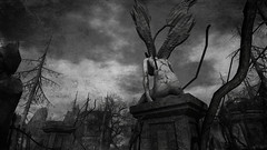 Exiled (Proph (burningprophets inworld)) Tags: unning bw taken perfect angle