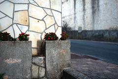 comme un lundi (csamperezbedos) Tags: mur wall roquefort aveyron fleurs rue bitume carrelage graphique dtail vide empty