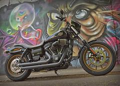 Break free.. (Harleynik Rides Again.) Tags: breakfree ride hd lowriders graffiti streetart bike moto biker harleynikridesagain