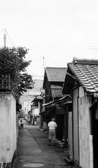 (transpiration) (Dinasty_Oomae) Tags: leica leicaiiia leica3a  iiia 3a   blackandwhite blackwhite monochrome bw outdoor   hiroshima   kure  backstreet