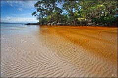 Greenpatch Copper (katepedley) Tags: jervis bay booderee national park greenpatch beach new south wales australia canon 5d 1740mm polariser newsouthwales nsw shoalhaven tanin creek ripples sand