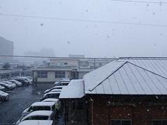 Snowing (fukapon) Tags: tweet snow huawei ple701l mediapadt270pro 弘前 hirosaki 青森 aomori