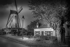 De Schellemolen van Damme. (rudi.verschoren) Tags: black white monotone damme house mill picturesque damse vaart tree road lamp post kanal canon 70d westvlaanderen flanders belgie europe eos