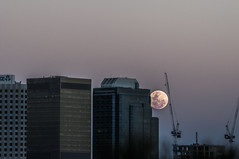 Supermoon (Richard Mart1n) Tags: supermoon moon astrophotography travel perth westernaustralia australia awesome stars nikon d5000