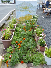 So easy to create a little garden (seikinsou) Tags: japan autumn okayama kamenoko ohaga misakiartworld cafe garden marigold flowerpot flower paint wall landscape art