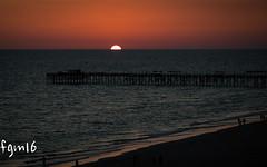 Sunset Florida 2 (fgm runs) Tags: sunset pier florida beach tampa remington silhouette