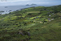VISTES DES DEL SHEEHAN'S POINT (Irlanda, agost de 2016) (perfectdayjosep) Tags: kerry comptatdekerry ireland irlanda ire perfectdayjosep sheehanspointireland