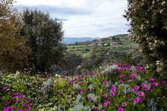 Tormes (JOAO DE BARROS) Tags: portugal joo barros landscape tormes