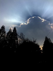 Blocking the Sun! (HigginsKorea) Tags: jeonju iphone5s sun rays