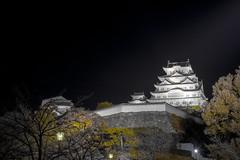 (deep.deepblue) Tags:  castle  nikon  japan d610    jp