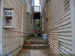Alleyway 104 Aro Street (Julies Camera) Tags: ptx wellington arostreet woodenhouses