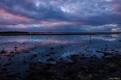Lac de grand Lieu (christophe.perraud.44310) Tags: lacdegrandlieu marais levdesoleil paysage nature wildlife