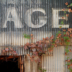 """""""between the lines of age"""" (msdonnalee) Tags: corrugatedtinsiding grapevine architecturaldetail commercialfacade garage foundry signage word age"""