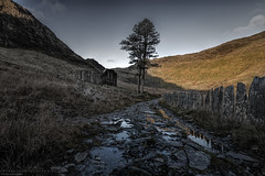 The Road to Redemption (MarkWaidson) Tags: cwmorthin slate quarry derelict chapel tree reflection morning mountains