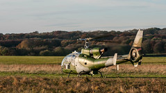 Gazelle on the DZ strip (Jez B) Tags: salisbury plain training area spta aac army air corps helicopter copter chopper helo military rotary wing dz drop zone