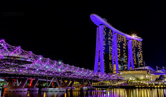 Helix Bridge (Oliver H16) Tags: singapur asien nikon d7000 wolken wasser city nachtaufnahme nightshot langzeitbelichtung night longexposure skyline chinatown downtown panorama singapurflyer singaporeflyer marinabaysands helixbrcke