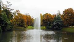 Parque del Balneario de Wiesbaden. (lumog37) Tags: parque park paisaje landscape fuente fountain