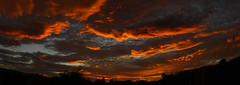 Sunset Halloween 2016 #14 Panorama e (Az Skies Photography) Tags: october 31 2016 october312016 103116 10312016 halloween sun sky skyline skyscape cloud clouds rio rico arizona az riorico rioricoaz red orange yellow gold golden salmon black canon eos rebel t2i canoneosrebelt2i eosrebelt2i arizonasky arizonaskyline arizonaskyscape set sunset arizonasunset dusk twilight nightfall halloweensunset