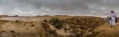 IMG_7029-Edit copy (**Waddah**/) Tags: saudi riyadh arabia desert raining canon d6 24105