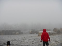 Heavy fog (Jeannette Greaves) Tags: fog farm 2016 poor visibility north yard cmwdred