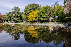 2016-10-16_10072016-10-16_1007_DSC5026 (Doug.Mall) Tags: usa boston massachusetts bostoncommon fallcolor reflection trees frogpond