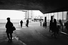 u.n.d.e.r.g.r.o.u.n.d. (gato-gato-gato) Tags: 35mm asph ch iso400 ilford leica leicamp leicasummiluxm35mmf14 mp mechanicalperfection messsucher schweiz strasse street streetphotographer streetphotography streettogs suisse summilux svizzera switzerland wetzlar zueri zuerich zurigo zrich analog analogphotography aspherical believeinfilm black classic film filmisnotdead filmphotography flickr gatogatogato gatogatogatoch homedeveloped manual rangefinder streetphoto streetpic tobiasgaulkech white wwwgatogatogatoch zrich manualfocus manuellerfokus manualmode schwarz weiss bw blanco negro monochrom monochrome blanc noir strase onthestreets mensch person human pedestrian fussgnger fusgnger passant zurich