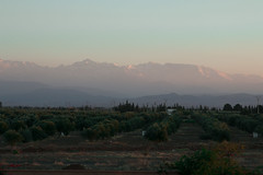 Atlas Mountains in the distance. (StudioCB) Tags: marrakech sunset landscape atlasmountains morocco