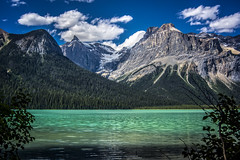A gemstone (wimvandemeerendonk, back in the cold brrrrr!) Tags: canada britishcolumbia yoho nationalpark wimvandem outdoors wild woods forest tree colour color colors colours contrast mountain mountains emeraldlake outdoor serene