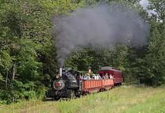 Viscose 6 on the Catskill Mountain Railroad (jterry618) Tags: newyork unitedstates baldwin steamlocomotive mounttremper 040t catskillmountainrailroad americanviscosecompany gemcityironmetalcompany scottsymans viscose6