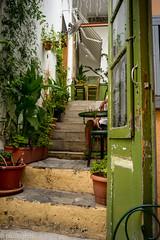 door (paologmb) Tags: door green open steps entrance athens vegetation instagram leicamtyp240 24mm28elmarit