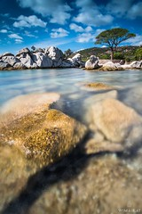 Not Seychelles - Corsica! (Wim Air) Tags: blue sea france tree beach rocks corsica bernhard wimmer palombaggia wimairat
