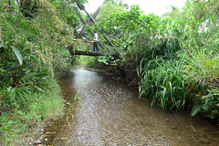 Faye Risking the Bridge (Bob Hawley) Tags: people outdoors asia taiwan bridges streams pingtung mudan aboriginalculture nikon1755f28 hengchunpeninsula nikond7100 paiwanaborigines
