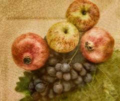 Autumn fruit_03 (Brian L55) Tags: autumn stilllife apple fruit leaf grapes crackle pomegranet