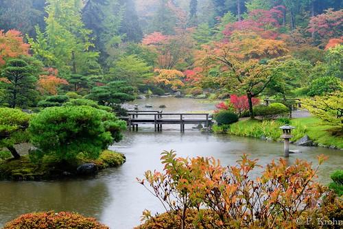 Thumbnail from Washington Park Arboretum
