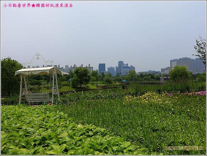 大田韓巴樹木園 (28).JPG