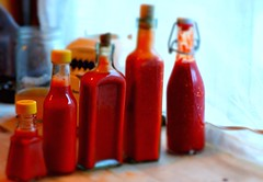 New Hot Sauce (Steven Edholm) Tags: hotsauce fermentation howtomakehotsauce lactofermentedhotsauce