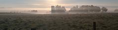 Blanket of fog (virgil martin) Tags: panorama ontario canada fog barn sunrise landscape cattle farm gimp silos elora wellingtoncounty microsoftice oloneo olympusomdem5