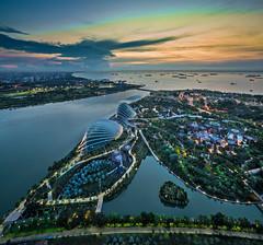 Garden By The Bay Singapore (Andrew Ker) Tags: park sky 3 tower pool marina sunrise hotel bay sand singapore floor infinity shift tilt tse 57th skypark 17mm a7rii a7r2